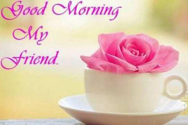 40 Good Morning Wallpaper For Whatsapp Fb Free Download
